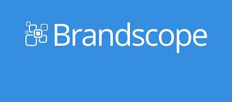 Brandscope Logo